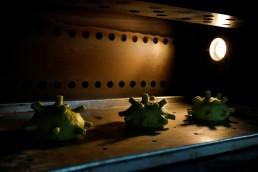 Burgers shaped as coronavirus are seen inside an oven at a restaurant in Hanoi, Vietnam March 25, 2020. REUTERS/Kham