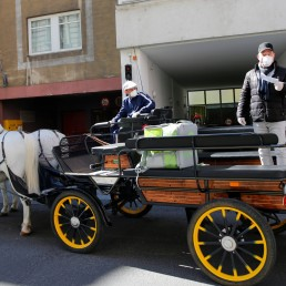 A Fiaker horse carriage is on its way to deliver food packages during the coronavirus disease (COVID-19) outbreak in Vienna, Austria April 8, 2020. REUTERS/Leonhard Foeger