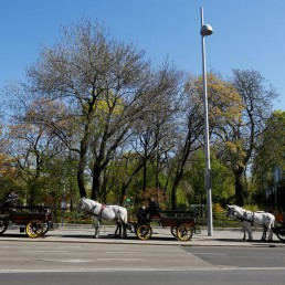 Fiaker horse carriages wait for food packages for delivery in front of the InterContinental Hotel during the coronavirus disease (COVID-19) outbreak in Vienna, Austria April 8, 2020. REUTERS/Leonhard Foeger