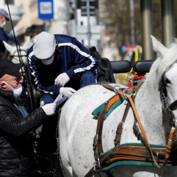Coachmen wearing face masks check their route as they wait on their Fiaker horse carriages for food packages for delivery in front of the InterContinental Hotel during the coronavirus disease (COVID-19) outbreak in Vienna, Austria April 8, 2020. REUTERS/Leonhard Foeger