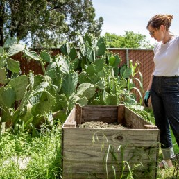 Jaime Calder looks checks out compost in her vegetable garden in Round Rock, Texas, amid the coronavirus disease (COVID-19) spread in the U.S., April 7, 2020. REUTERS/Sergio Flores