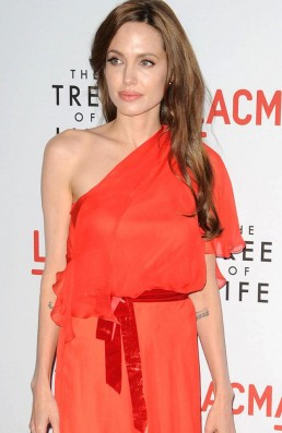 Angelina Jolie's 200k donation to NAACP