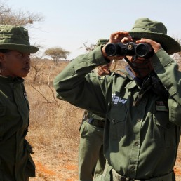 A member of Team Lioness, an all-female Kenyan ranger unit, uses binoculars during a patrol as they stay at Risa camp due to the coronavirus disease (COVID-19) outbreak, within Olgulului conservancy in Amboseli, Kenya August 7, 2020. Picture taken August 7, 2020. REUTERS/Njeri Mwangi