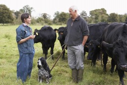Global Heroes 002 - September 2020 - Farmer In Discussion With Vet In Field