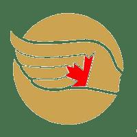 Angels of Flight Logo