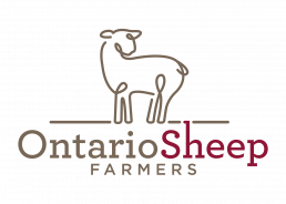 Ontario Sheep Farmers OSF - Sheep can help mitigate climate change