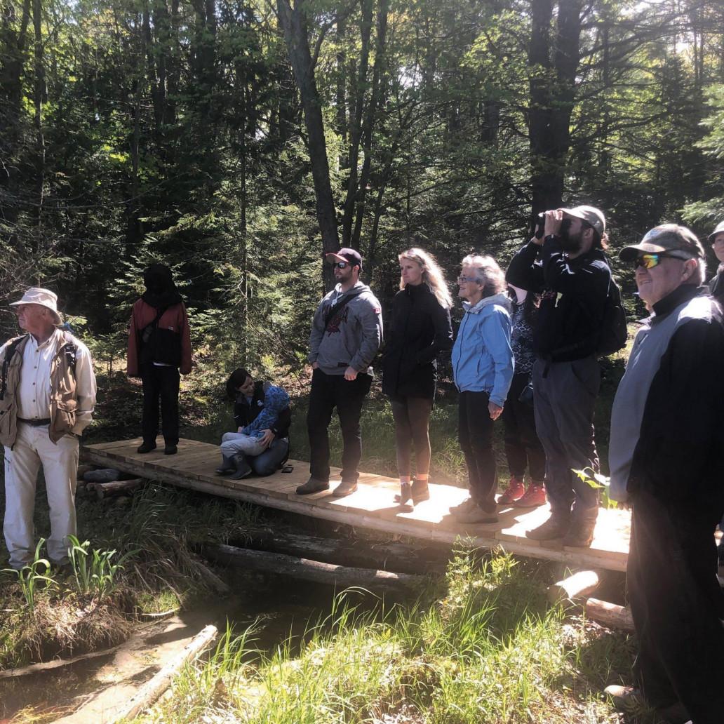 hiking over wooden bridge