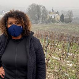 champagne france guadaloupe vineyard