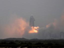 starship landing spacex elon musk