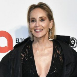 sharon stone aids the american foundation for aids research amfar