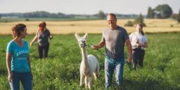 002GHN man with alpaca