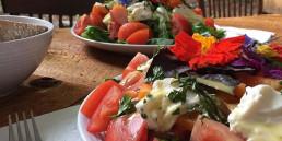 002GHN - Fall Glamping Fruit Salad